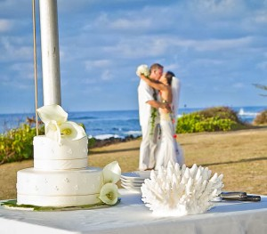 Hawaii Wedding Travel Experts